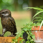 Bronze Resin Owl Sculpture