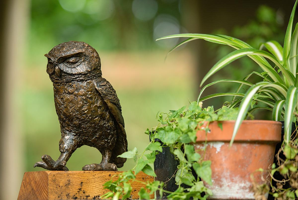Bronze Resin Owl Sculpture