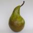 pear-1200x800
